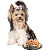 Влажные Корма для собак (3)