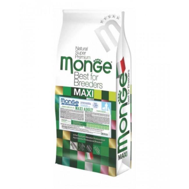 Monge Maxi adult