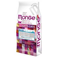 Monge GATTI CATS, Kitten  для котят