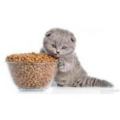 сухие корма для кошек (24)